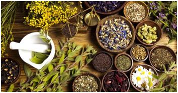 Травяные сборы и чаи